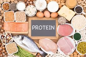 Proteins for health